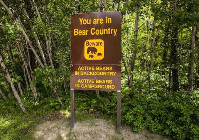 Georgian Bay camping bear sign