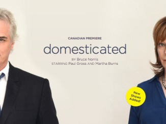 Domesticated with Paul Gross, Theatre review