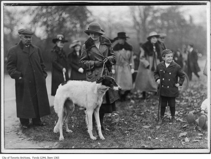 Aviatrix Miss Cassidy at Victory Bond Rally, Queen's Park. - [1915?] - Vintage Animal Photographs