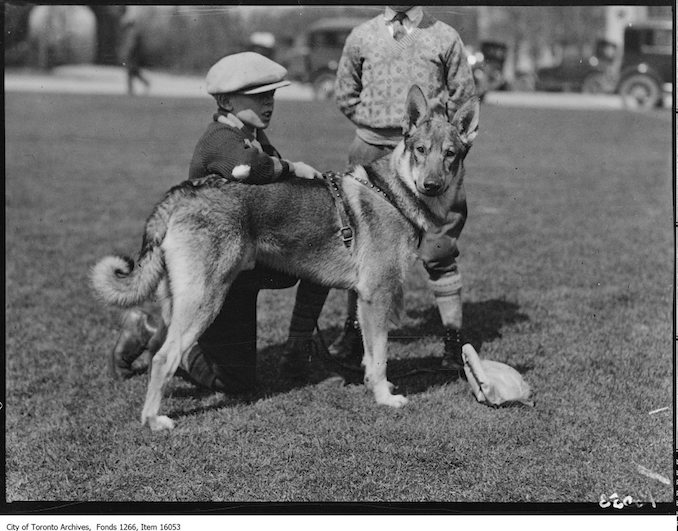 Pets Parade, Duke, Charlie Roberston, age 11. - April 2, 1929