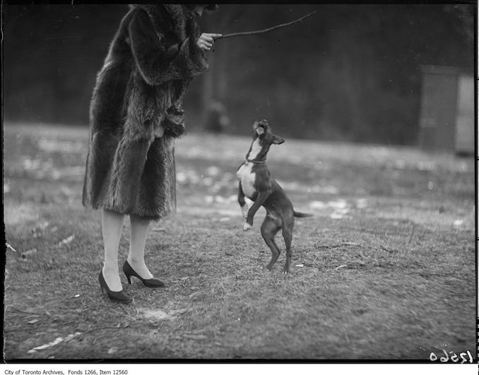 "J. H. Boyd, dog ""Tinker"" on hind feet. - January 22, 1928"
