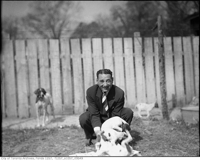 Nat Turofsky with dogs 1935-55 - Vintage Animal Photographs