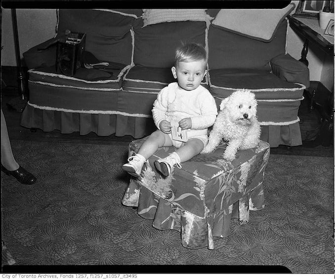 TTommy Lytle, grandson of Andrew G. Andy Lytle, with a dog 195? - Vintage Animal Photographs