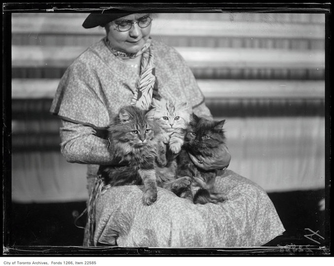 Winter Fair - woman holding three kittens - November 20, 1930 - Vintage Animal Photographs