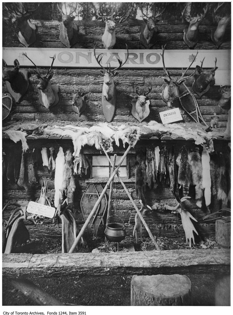 1920 - Ontario Department Of Game and Fisheries game exhibit, CNE copy