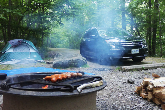Camping in the Allegheny National Forest - Pennsylvania road trip