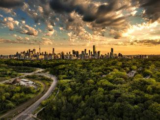 Toronto Photographer Greg Patterson