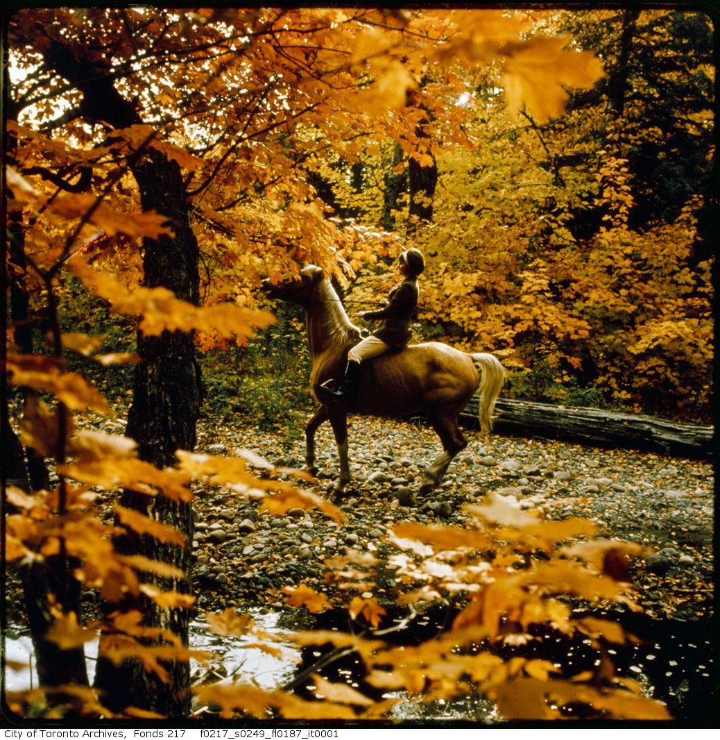 1965-69 - Horseback Riding Near Stables, Wilket Creek Park - Book 4, Photo 12 - Vintage Autumn Photographs