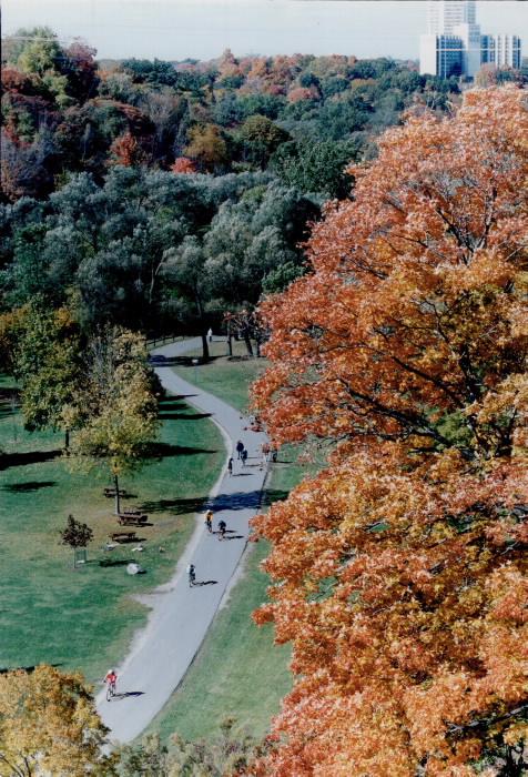 1993 - Seena Gundy Park