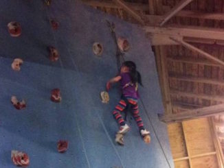rock oasis indoor rock climbing