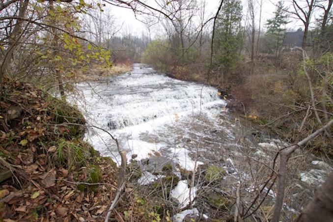 Hamilton Region Waterfalls darnley