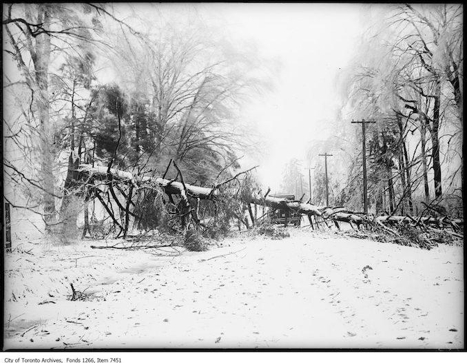 Storm photos, Dixie sideroad blocked by fallen tree, S. J. Burnamthorpe. - March 31, 1926