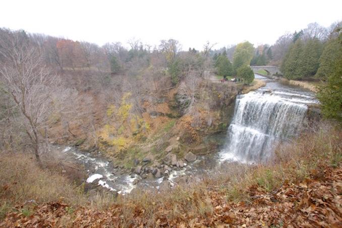 Hamilton Region Waterfalls webster