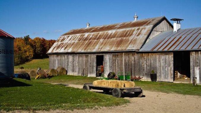 King City Farm Beretta farms