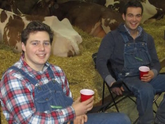 Royal-farmers-relaxing