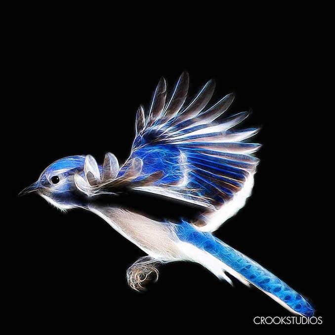 Blue Jay Landing Visual Effects