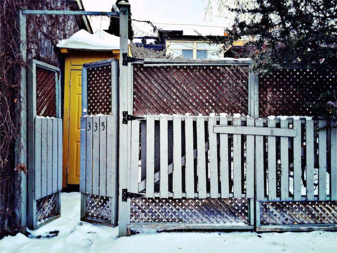 toronto yard - Julia Nathanson