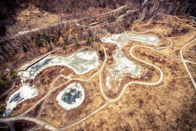 Evergreen Brickworks Toronto - frozen ponds