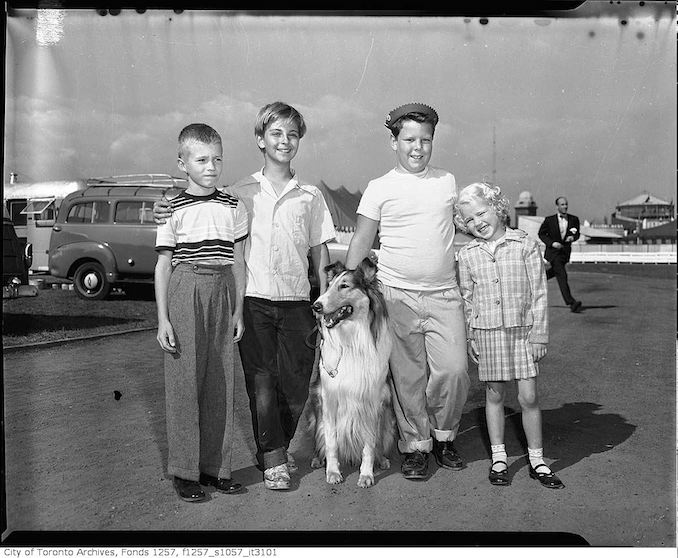 Children of William Albert %22Bill%22 Harris with Lassie at the CNE 1955