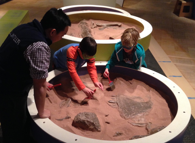 Digging with ROM Family Membership