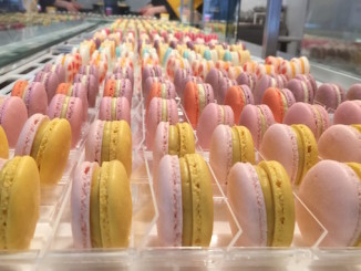 Macaron Day Toronto
