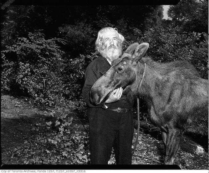 Joe La Flamme, The Moose Man with moose 194?