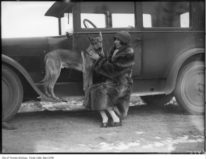 M. Laing & MacIntyre police dog, car. - December 13, 1925