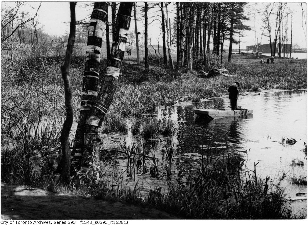 1920 - June 29 -Fishing - man in punt - Grenadier Pond - Vintage Fishing Photographs