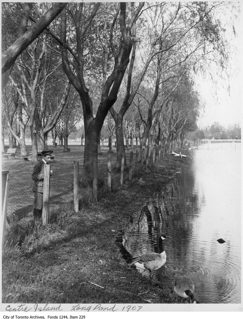 1907 - Long Pond, Centre Island