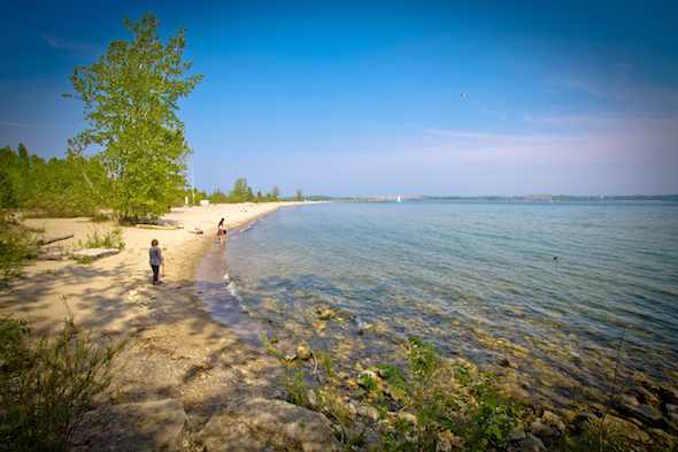 ward's island beach Swimming Beaches