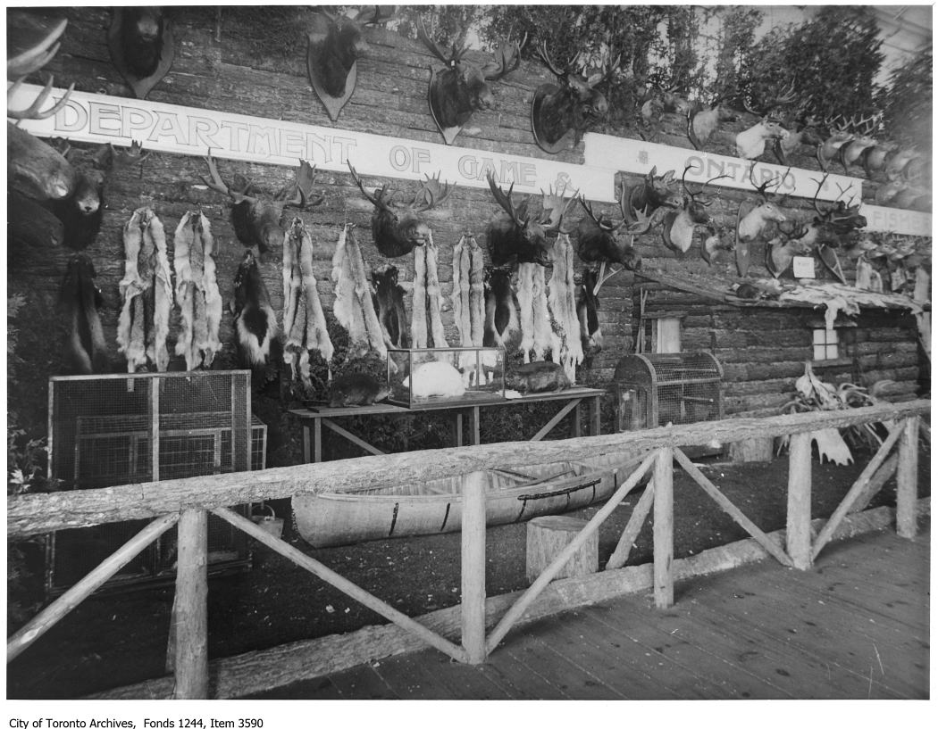1920 - Ontario Department Of Game and Fisheries game exhibit, CNE