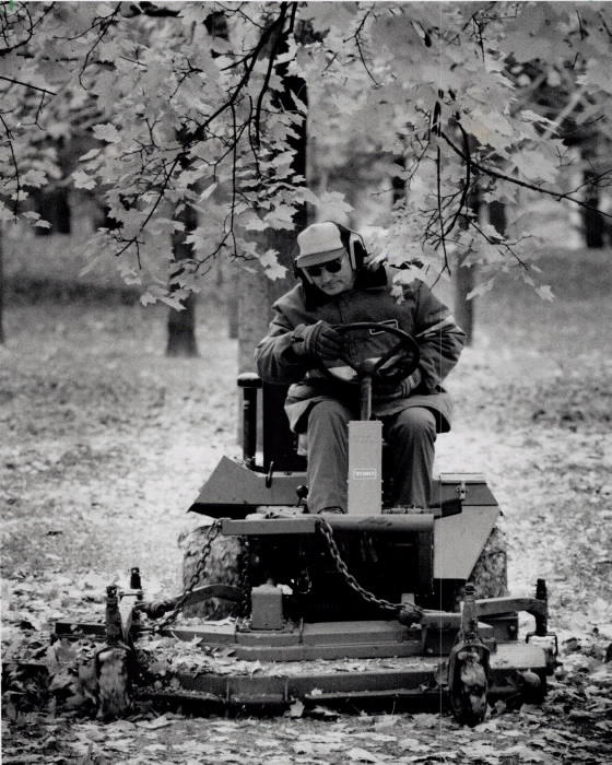 1992 - Aldo Vretenar of the city's department of parks is busy crushing the leaves that have fallen early this year in High Park so that they turn into fertilizer during the winter months