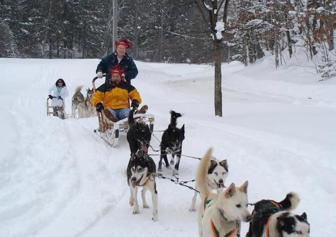 dog sledding in orillia - Ontario Winter Destinations