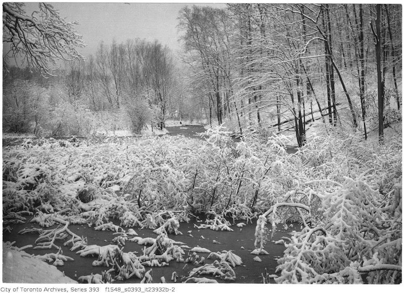 1932 - Nov 16 - High Park - snow scene after storm