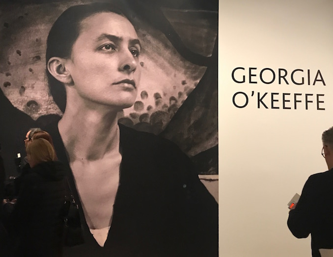 Media Preview of Georgia O'Keeffe at AGO. Photo credit: Sonya D