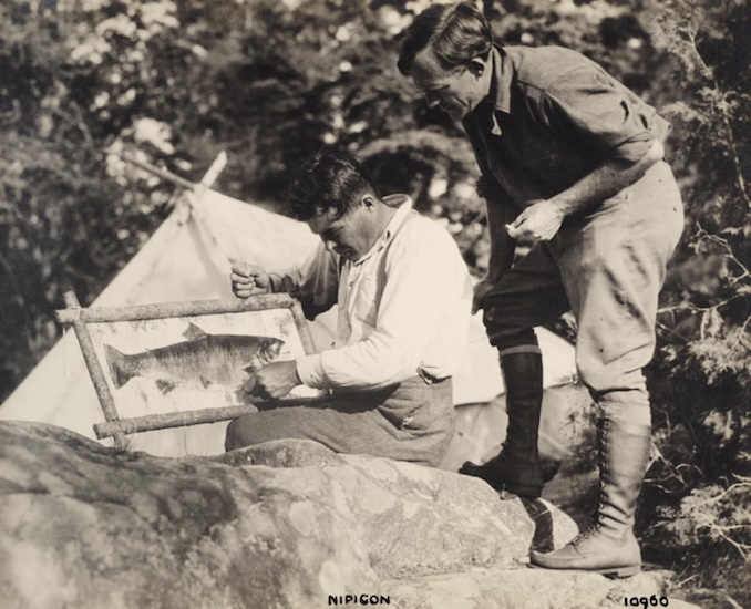 1925 - H. Armstrong Roberts - Nipigon - men mounting fish skin on board