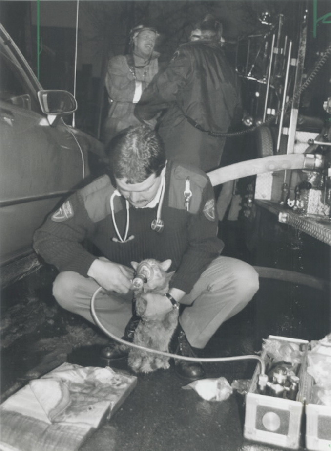 1993 - Keith Beaty - Fred; the cat; gets some oxygen from ambulance attendant Steve Henderson; after being rescued yesterday by Toronto firefighters at a fire at D'Arcy St. Taoist temple in Chinatown