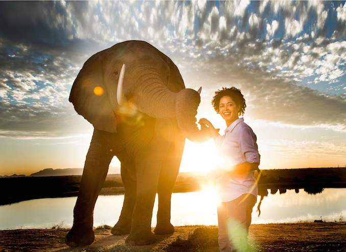 ice elephant