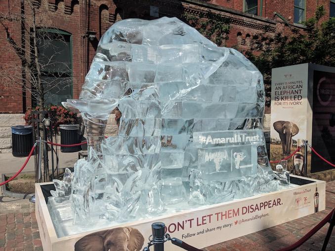 Elephant ice sculpture