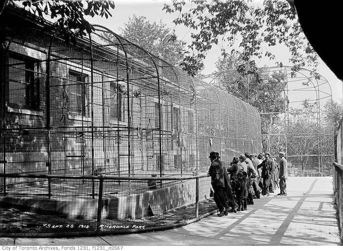 1913 - September 25 - Riverdale Zoo, monkeys