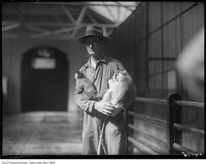1928 - September 17 - Riverdale Zoo, small monkey