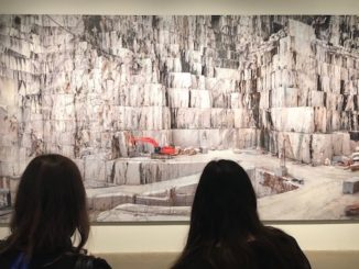 Anthropocene at the art gallery of ontario