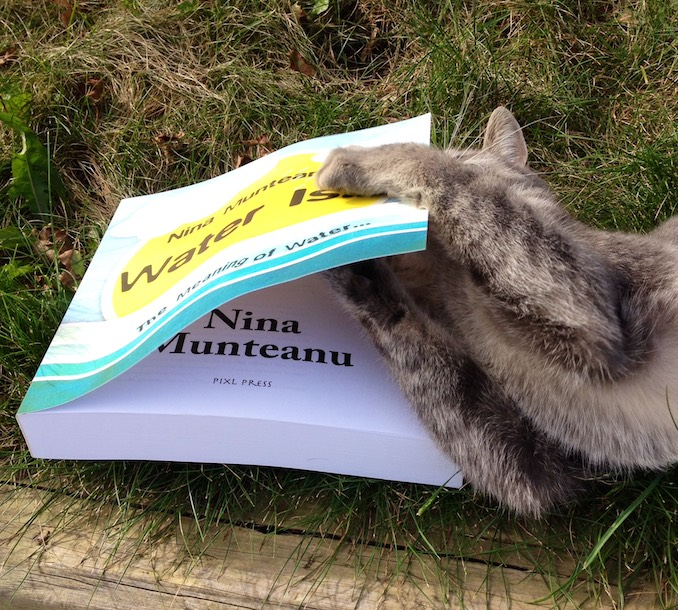 The cat gets to Nina's last book, a real page turner, it seems…