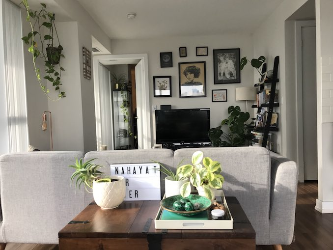 This is where I spend the majority of my time, in my apartment with my cat Kimchi, partner Rich and plants, lots of plants