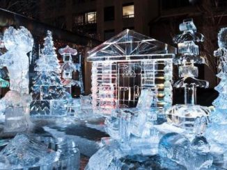 Top February Events in Toronto for the Family