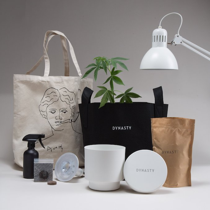 Dynasty Cannabis Grow Kit
