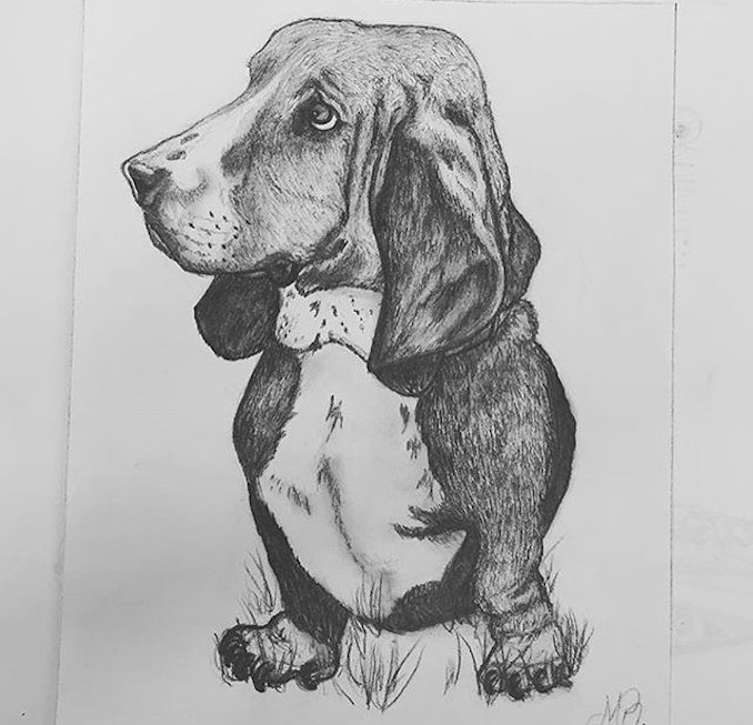 #2 A portrait of Chloe, my old dog who passed that I drew.