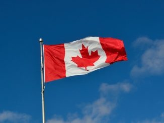 canadian election flag - canadian voters