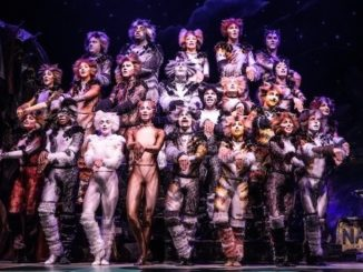 The North American Tour Company of CATS Photo by Matthew Murphy 2019