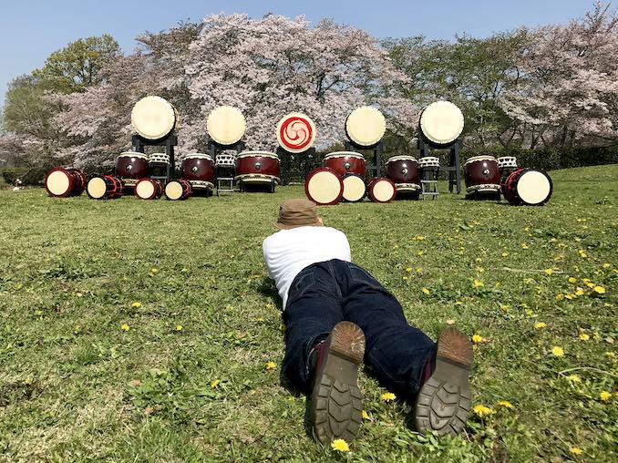 Took picturesof Taiko under the cherry blossom in Asuka. Asuka is one of the good place to see cherry blossom in Spring.